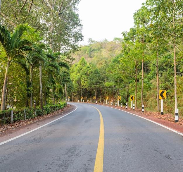 Strada della campagna con il segnale stradale della curva d'avvertimento