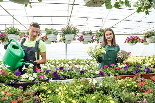 Coppia di fioristi che si prendono cura dei fiori in serra industriale