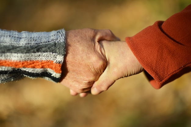 Un paio di mani insieme sulle foglie cadute