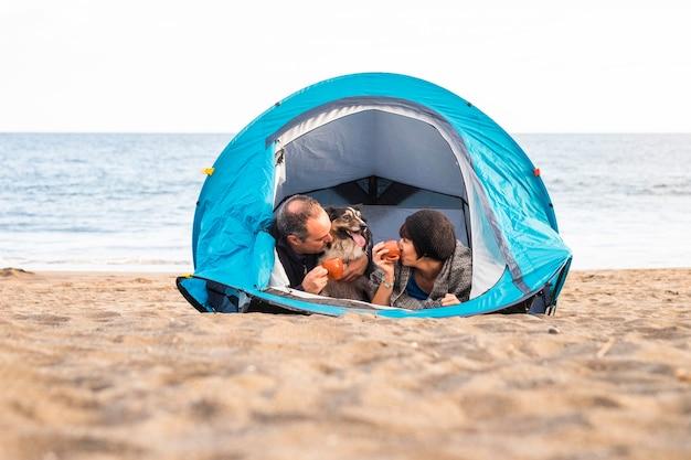 Coppia guardando lo smart phone e divertirsi all'interno di una tenda in campeggio libero sulla spiaggia dog border collie dietro di loro guardando la telecamera. colori vintage e concetto di famiglia di vacanza.