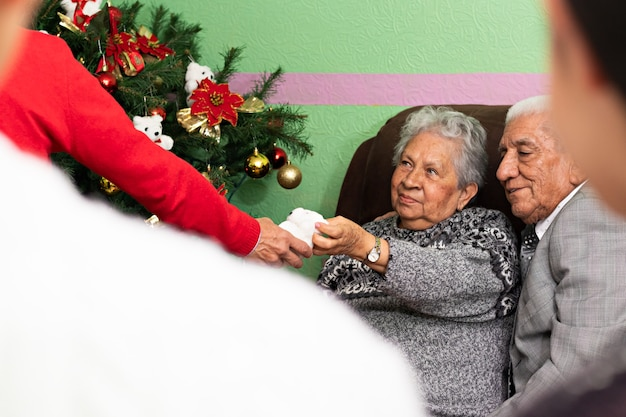 Un paio di anziani che aiutano a decorare l'albero di natale