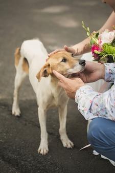 Coppia cane da compagnia sulla strada
