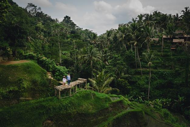 Matura in piedi sul ponte di legno vicino a terrazze di riso a bali indonesia. tenersi per mano. atmosfera romantica. vacanza tropicale. ripresa aerea. sullo sfondo di palme da cocco.