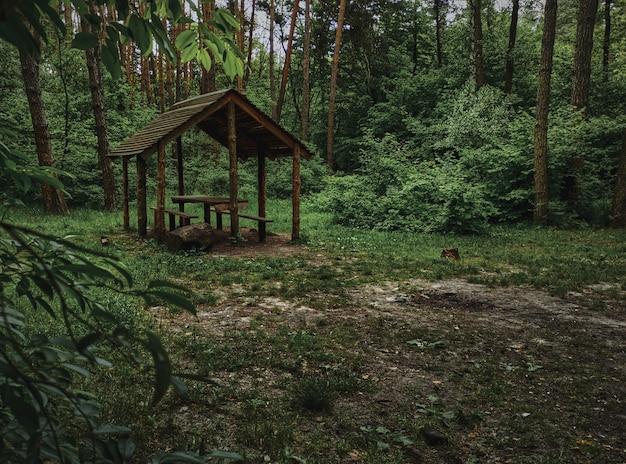 Posto a sedere coperto. un gazebo in legno per rilassarsi nel bosco