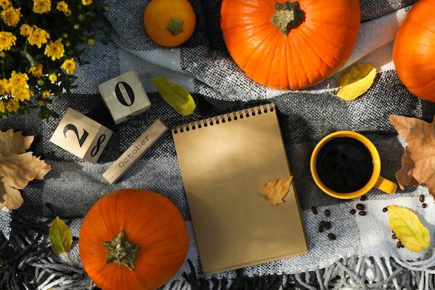 Accogliente concetto di autunno con zucche all'aperto, vista dall'alto