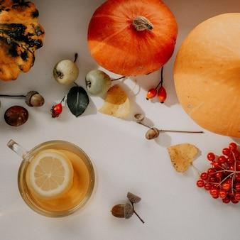 Accogliente piatto autunnale con una tazza di tè al limone, zucche e ghiande