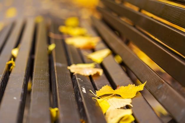 Panca accogliente per il riposo in un parco autunnale con foglie gialle. atmosfera autunnale.
