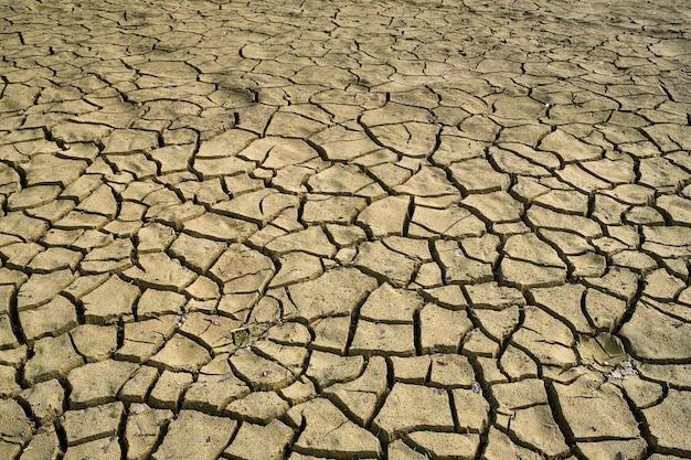 Terra secca incrinata con struttura di crepe