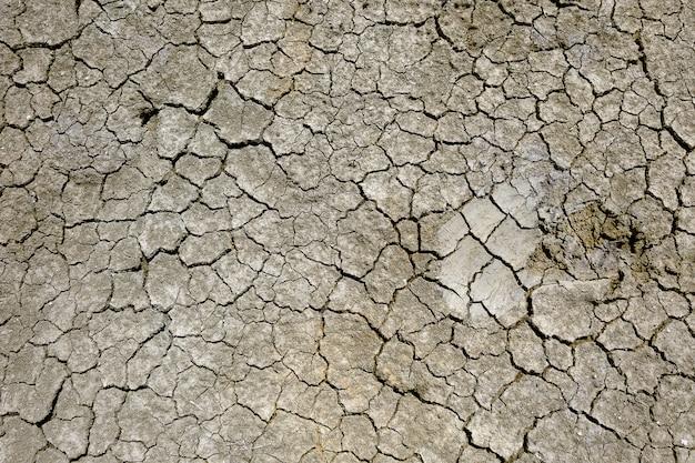 Terra secca incrinata