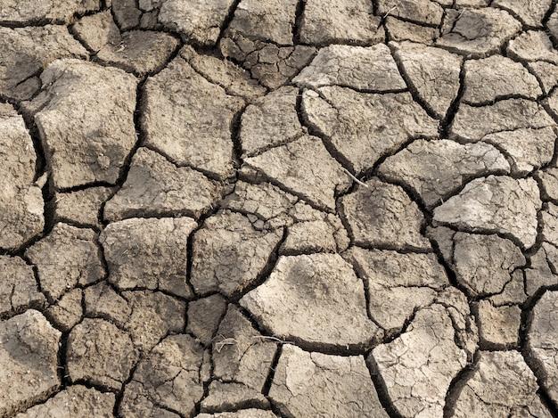 Terreno asciutto incrinato. cambiamenti climatici, riscaldamento globale, siccità.