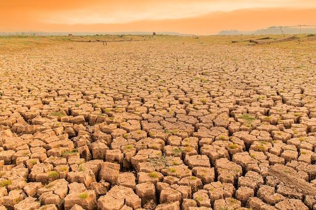 Terra secca incrinata senza acqua.