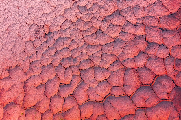 Sfondo di terra incrinata metaforico per il cambiamento climatico e il riscaldamento globale