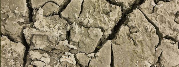 Crepe nella terra, immagine banner con spazio di copia