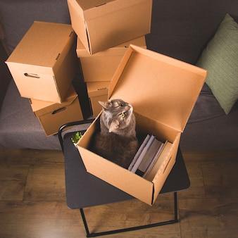 Scatole artigianali per raccogliere oggetti e trasferirsi in un altro appartamento. nuovo concetto di abitazione e trasferimento.