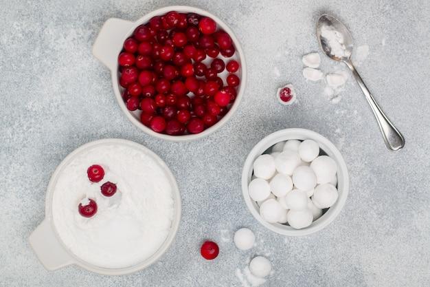 Mirtilli rossi in zucchero a velo