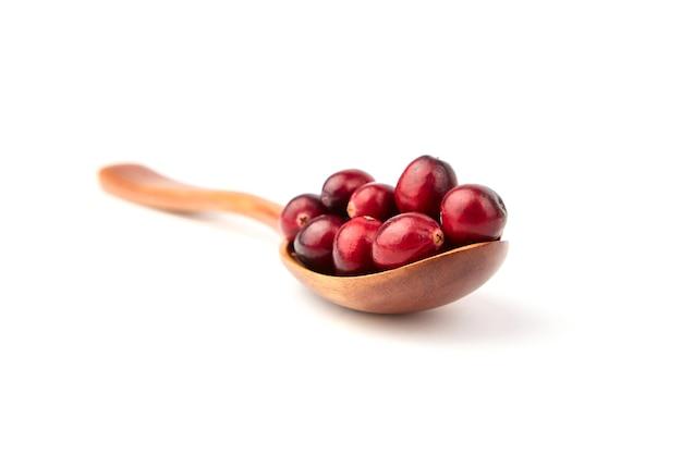 Mirtilli rossi in cucchiaio di legno isolato su bianco