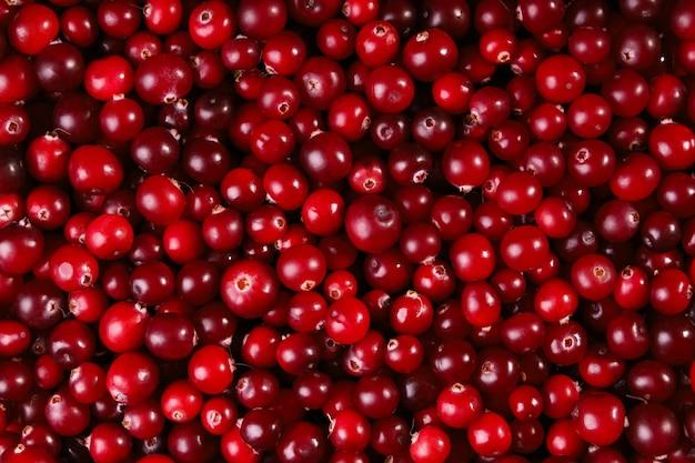 Primo piano del raccolto della vitamina del fondo rosso dell'alimento del mirtillo rosso della superficie