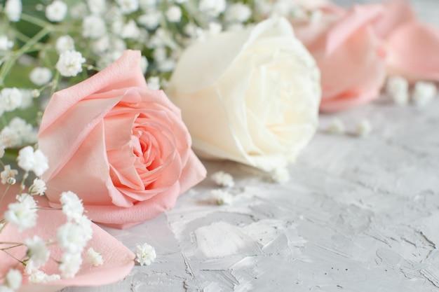 Rose crema e rosa con piccoli fiori bianchi si chiudono su uno sfondo grigio