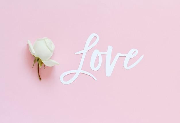 Rosa crema e testo amore su una vista dall'alto rosa chiaro