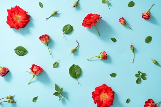 Disposizione creativa di fiori rossi e foglie su blu pastello.