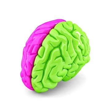 Concetto di cervello creativo. isolato. contiene il tracciato di ritaglio