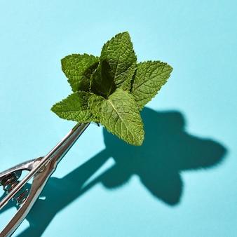 Composizione creativa da foglie di menta nel cucchiaio di metallo per gelato