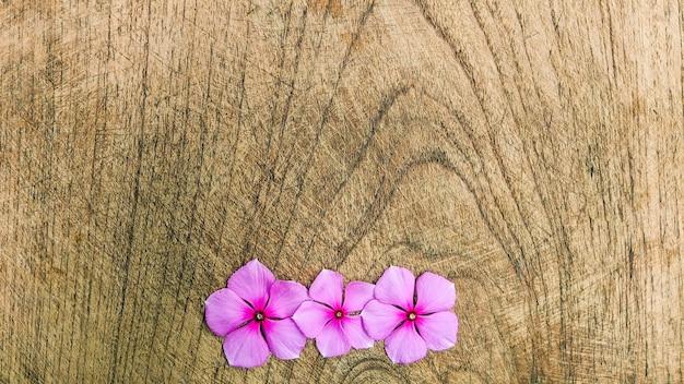 Layout creativo fatto di fiori viola su legno