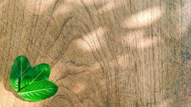 Layout creativo fatto di foglie tropicali su fondo in legno concetto minimalista con copia spazio