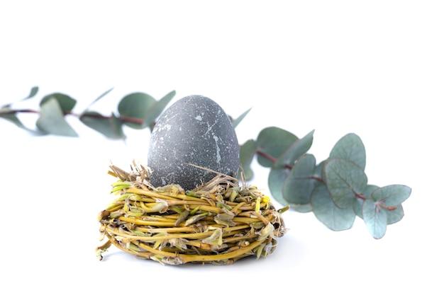 Foto creativa con uovo di pasqua ed eucalipto