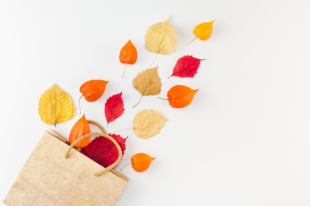 Creative top view flat lay autunno composizione shopping bag essiccati fiori d'arancio foglie