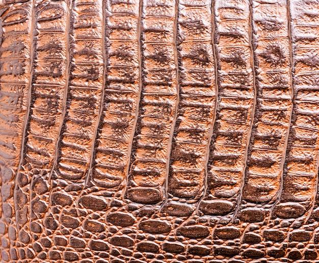 Foto del primo piano di struttura della pelle della pelle di coccodrillo