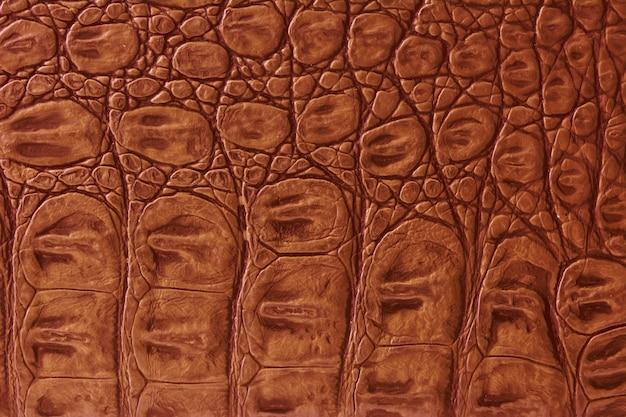 Texture della pelle di coccodrillo