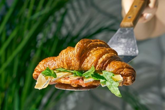 Panino croissant con formaggio brie, rucola. luce forte. sfondo bianco