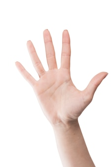 Ritaglia la mano su bianco