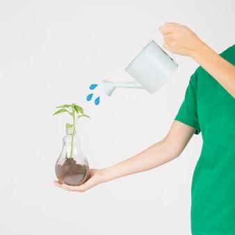 Ritaglia le mani innaffiando la pianta
