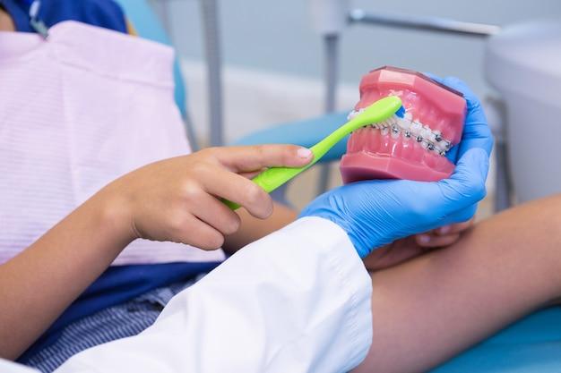 Immagine ritagliata del dentista che insegna al ragazzo a lavarsi i denti sulla protesi