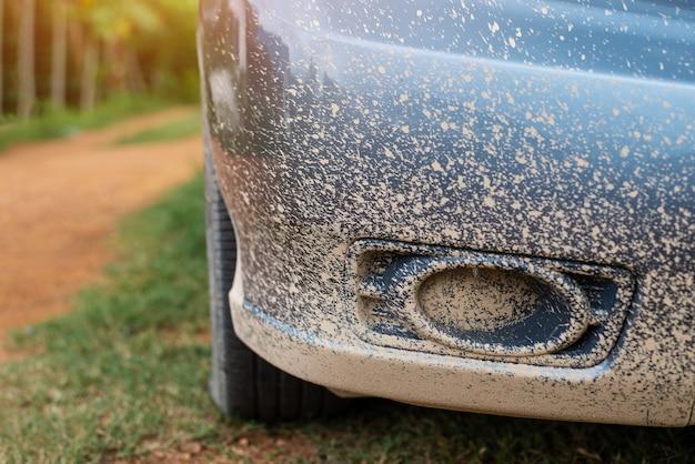 Immagine ritagliata di auto fangosa nella parte anteriore