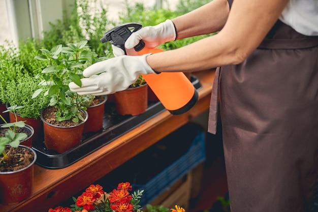 Foto ritagliata di una donna caucasica con guanti da lavoro che spruzza piante usando un flacone spray