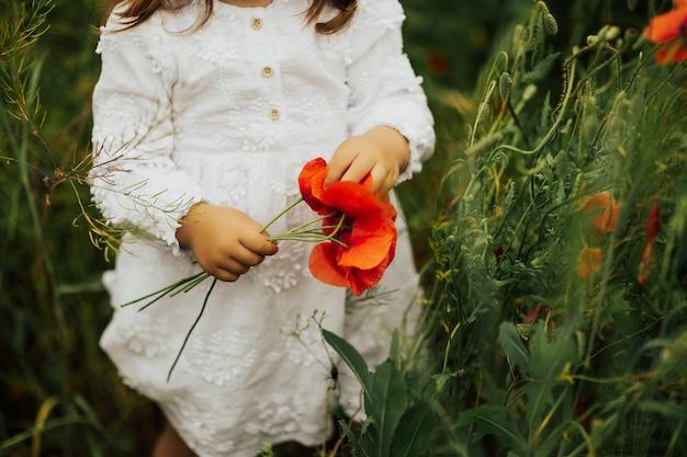 La foto ritagliata di una bambina in abito bianco si trova in un campo di papaveri e tiene in mano un mazzo di papaveri