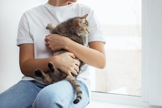 Ritagliata colpo di una giovane donna seduta su un davanzale e che tiene un piccolo gatto che guarda fuori dalla finestra