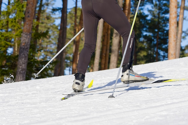 Sci di fondo nella soleggiata giornata invernale sci di fondo closeup