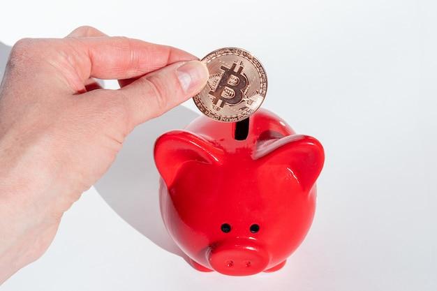 Concetto di risparmio di criptovaluta. una mano tiene una moneta bitcoin su un salvadanaio rosso su sfondo bianco.