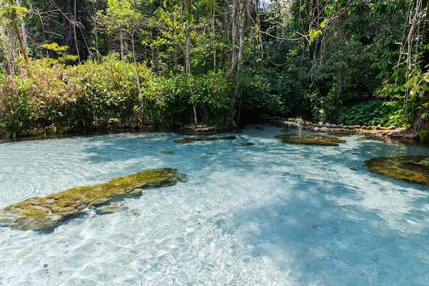 Acqua cristallina nella foresta di spartiacque di ban nam rad