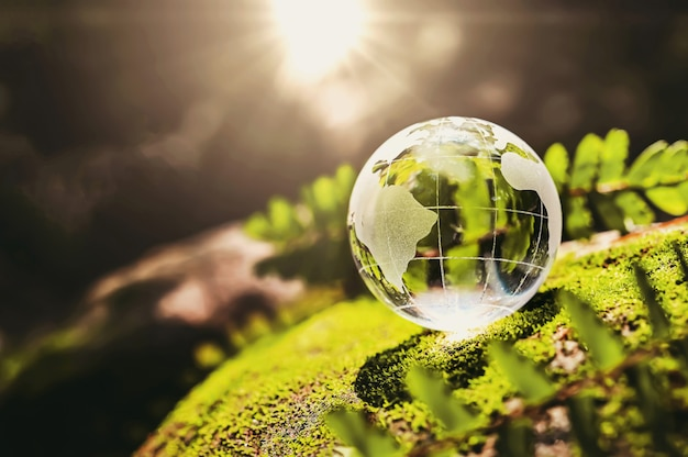 Globo di cristallo in vetro poggiato su pietra muschiata con sole in natura. concetto di ambiente eco