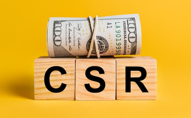 Csr con soldi su un muro giallo