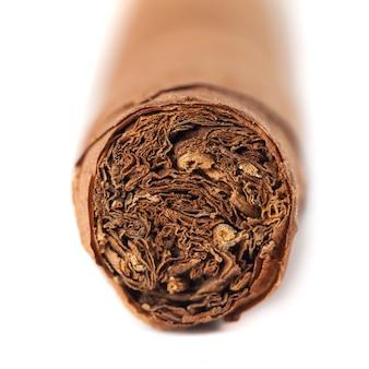 Primo piano del sigaro cubano isolato sopra bianco.