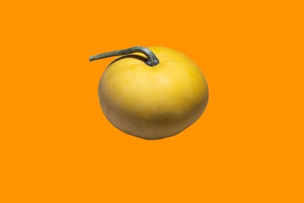 Zucca cucurbita su sfondo arancione isolato