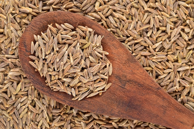 Semi di cumino su un cucchiaio di legno