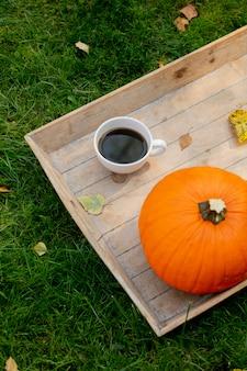 Tazza di caffè e zucca su una scrivania su erba verde