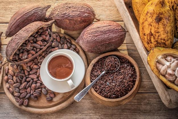 Tazza di cioccolata calda con cacao in polvere, fave di cacao